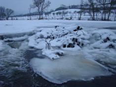 zima 2008/2009
